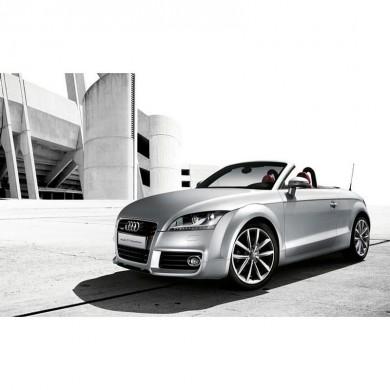 2013款  奥迪TT 敞篷2.0T前驱,轿车团购,轿车价格,轿车报价
