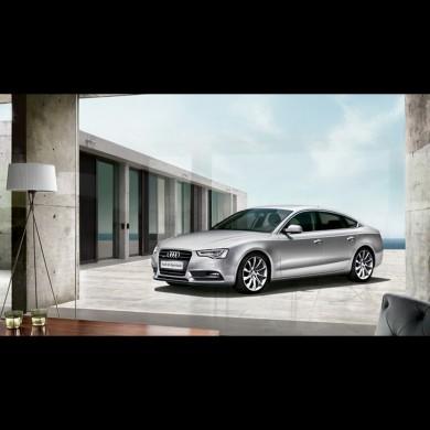 奥迪A5 Sportback 2.0T 轿跑车,轿车团购,轿车价格,轿车报价