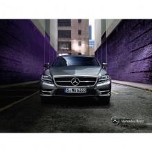 梅赛德斯-奔驰CLS 2012款 CLS300 CGI